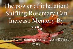 """The-power-of-inhalation  SparkNaturals.com carry high quality reasonably priced oils. Use my coupon code """"Rhonda"""" and save an additional 10%."""
