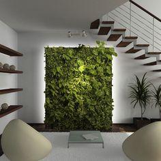 PAREDE VERDE | uma ótima e elegante opção para quem deseja ter plantas dentro de casa é investir em jardins na parede. #jardimemcasa #jardimindoor #parededeplanta #dicaTecnisa #Tecnisa