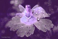 Love this fairy <3