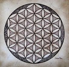 Image result for flower of life