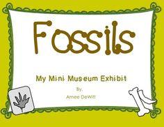 Cute fossils activity! Mini Museum Exhibit