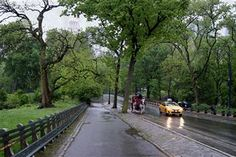 """Central Park in the Rain"" by Kathryn Wedding has been entered into August's Featured Artist Contest. Go here to vote: http://woobox.com/ebpgnn"