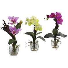 White Purple Mixed Orchid w/Cube Arrangements (Set of times the beauty, and three times your decorating options. This wonderful set of mixed Orchids perfectly capture everything that makes the Orchid so sought-after, with the added bonus of Orchids In Water, Silk Orchids, Purple Orchids, White Orchids, Faux Flowers, Colorful Flowers, Silk Flowers, Silk Flower Arrangements, Flower Centerpieces