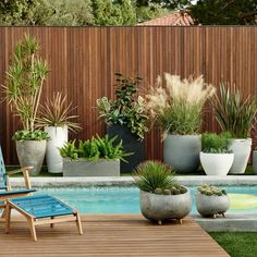 If you are working with the best backyard pool landscaping ideas there are lot of choices. You need to look into your budget for backyard landscaping ideas Backyard Pool Landscaping, Tropical Landscaping, Modern Landscaping, Landscaping Ideas, Landscaping Edging, Landscaping Company, Sloped Backyard, Modern Patio, Modern Garden Design