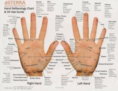 doterra essential oils uses chart - Google Search