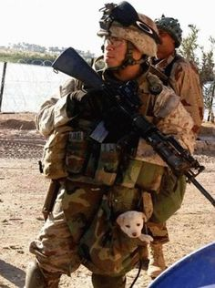 Funny Military Pictures: Soldier and Puppy LUCK IN HIS POCKET