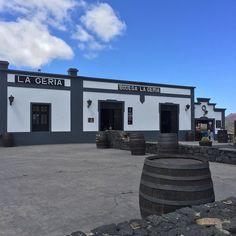 La Geria... Hier gibt es lecker Weinchen und war auf dem WineRun eines unserer Wegpunkte...