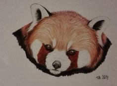 Raccoon. Made only with crayons.