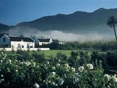 Jan Harmsgat Country House guest farm accommodation in Swellendam convenient for visiting the famous Cape Winelands of the Western Cape of South Africa. Provinces Of South Africa, South Afrika, African House, Cape Town South Africa, Farm Stay, Beautiful Sunset, Wine Country, Travel, Outdoor