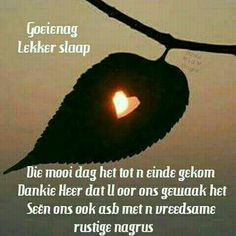 Special Quotes, Afrikaans, Good Night, Movie Posters, African Dessert, Friends, Nighty Night, Amigos, Film Poster