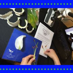PLANTS – DEMOS, LABS & SCIENCE STATIONS: Working in the lab and being engaged in science experiments is the most exciting part of science. The following Demos, Labs and Science Stations give your students the opportunity to investigate, explore and learn