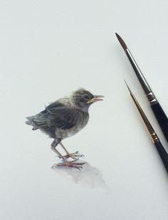 Miniature birds 1