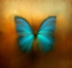 <3 Butterfly  by *RHADS  Digital Art / Paintings & Airbrushing / Abstract