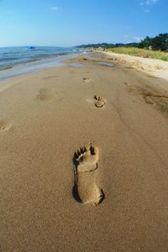 Walk Lake Michigan... as many days as possible this summer!