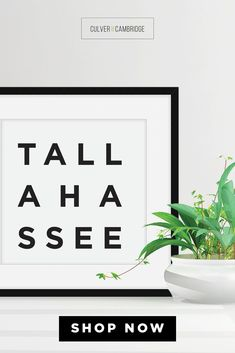 Culver and Cambridge's Minimalist Tallahassee Print. Bold, black typography with your favorite place, your hometown, or where you left your heart. Our minimalist prints make great gallery walls and college dorm décor. Shop our Amazon Store for more cities, states, and countries Tallahassee Poster, Tallahassee Wall Art, Minimalist City Wall Art, City Poster, Travel Art, Black and White Modern Art || culverandcambridge.com || Tallahassee Florida Gifts || #poster #artprint #walldecor Minimalist Dorm, Living Room Prints, Tallahassee Florida, College Dorm Decorations, Office Prints, Black And White Prints, Modern City, Gallery Walls, Office Wall Decor