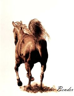 """Sun-kissed (horse - mare) by julie bender Pyrography ~ 20"""" x 15"""""""