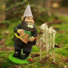 Gnome with a watering can...