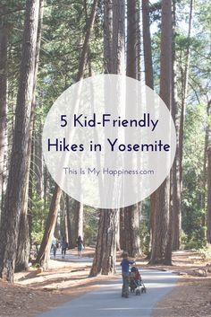 5 Easy Hikes in Yosemite National Park | This Is My Happiness