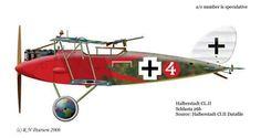 Halberstadt CL.II