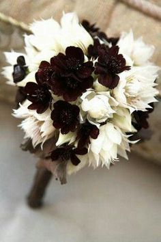 Very Unique Wedding Bouquet Arranged With: Chocolate Cosmos + Blushing Bride Protea