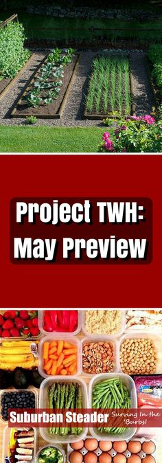 May is lining up to be an interesting month at the Suburban Steader Homestad. The May Preview of Project TWH discusses all the topics we touch this month!