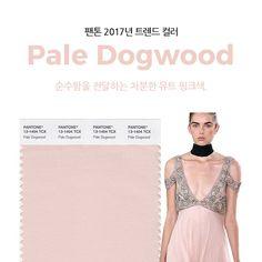 팬톤 선정 2017년 트렌드 컬러
