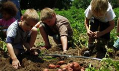 Weeklong Farm Camp - I would LOVE to something like this.