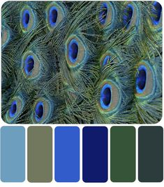 ideas master cozy blue Color Palette with Premo Polymer Clay Color Recipes Scheme Color, Color Schemes Colour Palettes, Paint Color Schemes, Green Colour Palette, Color Combos, Peacock Color Scheme, Peacock Colors, Best Color Combinations, Silver Color Palette
