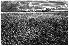 Wood Engravings by Chris Wormell - Wheatfield for bread packaging.