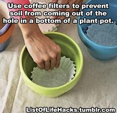 Coffee filters in pots drains the water without the soil. jbugsy Coffee filters in pots drains the water without the soil. Coffee filters in pots drains the water without the soil. Container Gardening, Gardening Tips, Succulent Containers, Container Flowers, Succulents, Container Plants, Vegetable Gardening, Organic Gardening, Urban Gardening