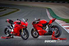 Ducati 1299 Panigale Ducati Performance Upgrade Pictures - Ducati 1299 Forum
