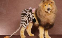 21 Dogs Groomed Like Exotic Animals And Fictional Characters