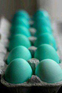 Tiffany Blue Easter Eggs.