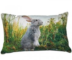 Rupert Rabbit Cushion