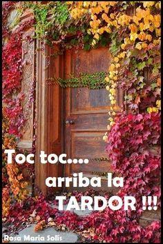 Toc toc...arriba la TARDOR !!!