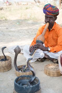 Snake Charmer in Agra Picture, India CC We Are The World, People Of The World, Nova Deli, Visit India, Thinking Day, Vietnam, India Travel, First World, Laos