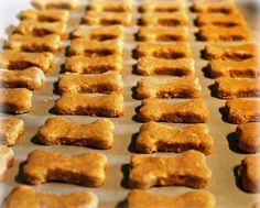 Receitas de Biscoitos Caseiros para animais