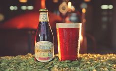 Magnanimous Magnums The Story of Anchor'sChristmas Ale Magnums | Anchor Brewing Blog