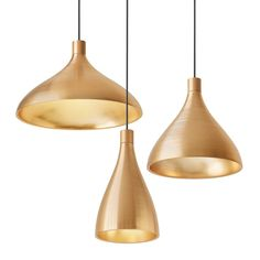 Pablo Design's Swell Single Indoor/Outdoor Pendant Light: Brass