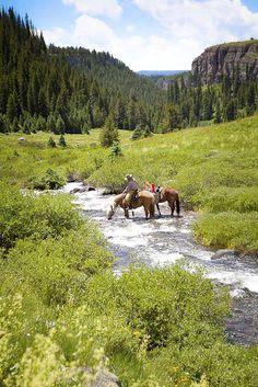 ♔  landscape-river-horses-mountains