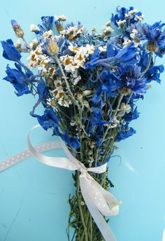 Mixed blue dried flower bunch exclusive to Daisy Gifts Ltd with delphiniums, cornflowers, feverfew & other flowers www.daisyshop.co.uk