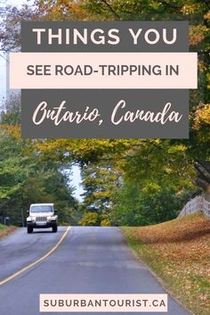 Five Things You Will See On Road Trips In Ontario There are so many cool things you can see on a road trip in Ontario. From special historic signs to weird vehicles. Animals and pretty landscapes. Read on more! Road Trip Packing, Road Trip Hacks, Packing List For Travel, Travel Tips, Travel Destinations, Road Trips, Pretty Landscapes, Ontario Travel, Canada Travel