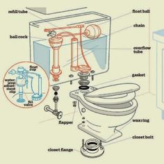 Fixing a leaky toilet is an easy homeowner repair if you know how to identify parts and problems. We show you how with with this handy guide. Home Renovation, Home Remodeling, Bathroom Remodeling, Toilet Repair, Sink Repair, Bathroom Repair, Bidet, Home Fix, Diy Home Repair