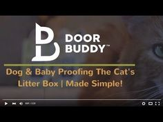 Looking for an easier solution on how to dog proof litter box and baby proof doors? Watch how easy Door Buddy makes it to keep dogs & crawling babies out of the cat's litter box! TheDoorBuddy.com