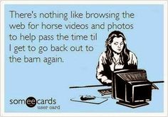 """There's nothing like browsing the web for horse videos and photos to help pass the time til I get to go back out to the barn again."""