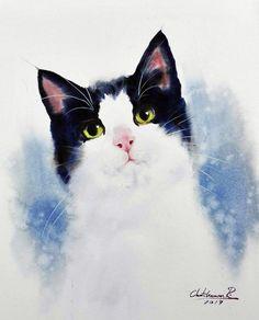 고양이 수채화 그림- Chatchawarn Ruksa의 수채화 동물 그림(대전 취미미술 수채화 자료) : 네이버 블로그