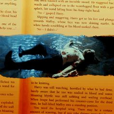 …Malfoy, who was shaking uncontrollably in a pool of his own blood.  - HARRY POTTER AND THE HALF-BLOOD PRINCE by J.K. Rowling (p. 489)
