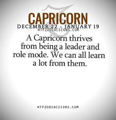 A Capricorn thrives from being a leader and role mode. We can all learn a lot from them.   - WTF Zodiac Signs Daily Horoscope!