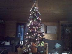 $ store Christmas tree decorating. gintin2.blogspot.com