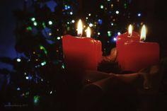 Rozloučení s Vánočními svátky - Fotografie & Design